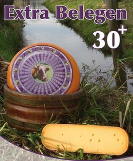30+ Gouda Cheese