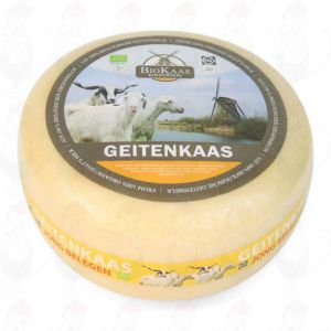Organic goat cheese - Gouda Cheese | Premium Quality | Entire cheese 5,4 kilo / 11.9 lbs