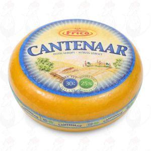 Cantenaar 30 + Cheese - Holland Master | Premium Quality | Entire cheese 11 kilo / 24.2 lbs