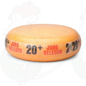 20+ Low Fat Cheese | Premium Quality | Entire cheese 12 kilos / 26.4 lbs
