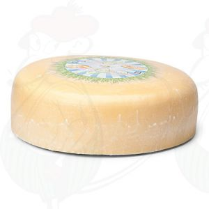 Young matured Organic Gouda cheese | Premium Quality | Entire cheese 7,5 kilo / 16.5 lbs