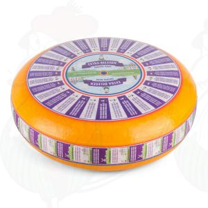 Fully-Matured Gouda Cheese | Premium Quality | Entire cheese 11 kilo / 24.2 lbs