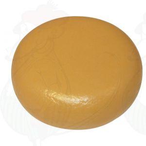 Cheese Dummy Gouda (model) - black - 12kg