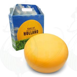Young Gouda Cheese 4,5 kilo in a gift box