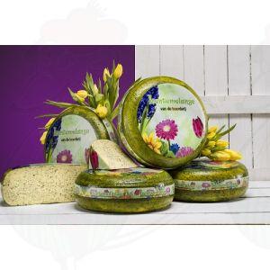 Spring blend cheese | Entire cheese 9,2 kilo / 19.32 lbs