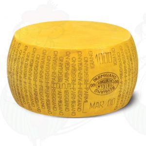 Cheese Dummy Parmesan Reggiano