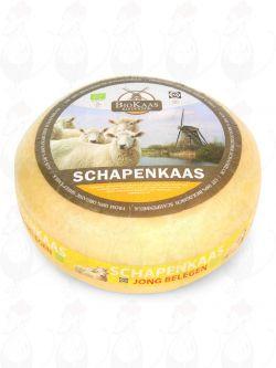 Organic sheep's milk cheese - Gouda Cheese | Premium Quality